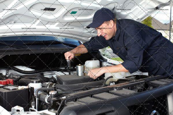 Professional Mechanic